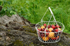 Picnic with mixed berries and fruits Royalty Free Stock Image