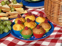 Picnic with muffins Stock Images