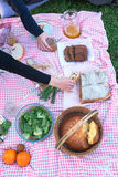 At the picnic Stock Image