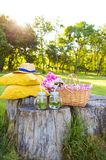 Picnic on nature. Beautiful basket stands on a wooden stump with flowers and drinks Royalty Free Stock Image