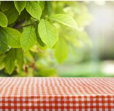 Picnic on nature. Picnic kitchen cloth tablecloth summer wood Royalty Free Stock Photos