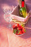 Picnic on the nature. Romantic dinner on the nature. Holidays on holidays or weekends. vertical photo. / royalty free stock photography