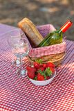 Picnic on the nature. Romantic dinner on the nature. Holidays on holidays or weekends. vertical photo. / royalty free stock image