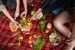 Picnic nature time delicious food drink concept. How to organize a hike Royalty Free Stock Images