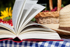 Picnic novel Stock Photo