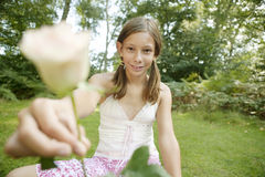 Picnic Offering Rose Stock Photos