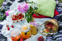 Picnic in the outdoor with strawberry, apples and cold beverages Royalty Free Stock Photography