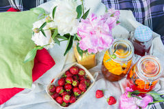 Picnic in the outdoor with strawberry and cold beverages Stock Photography