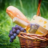 Picnic outdoors Royalty Free Stock Photography
