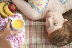 Picnic Overhead Upside Down Royalty Free Stock Image