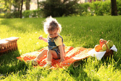 Picnic in park Royalty Free Stock Images