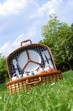 Picnic in the park. Close up of a picnic basket in the park Royalty Free Stock Photography