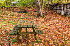 Picnic Park Bench in the Fall Stock Image