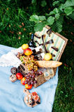 Picnic at the park, delicious food Royalty Free Stock Photo
