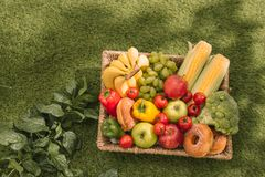 Picnic at the park on the grass with food and drink on blanket.  Stock Photography