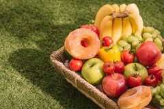Picnic at the park on the grass with food and drink on blanket.  Royalty Free Stock Photography
