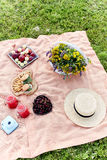 Picnic at the park on the grass: tablecloth, basket, healthy food and accessories. Royalty Free Stock Photos