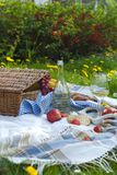 Picnic in the park. A green meadow with flowers, a plaid and a bottle of wine. Romantic dinner in nature. Free space for text. Spring in the Netherlands Royalty Free Stock Image
