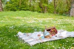 Picnic in the park. A green meadow with flowers, a plaid and a bottle of wine. Romantic dinner in nature. Free space for text. Spring in the Netherlands Royalty Free Stock Photos
