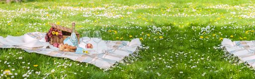 Picnic in the park. A green meadow with flowers, a plaid and a bottle of wine. Romantic dinner in nature. Free space for text. Spring in the Netherlands Stock Photography