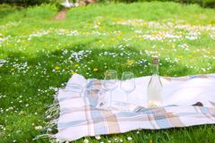 Picnic in the park. A green meadow with flowers, a plaid and a bottle of wine. Romantic dinner in the open air. Picnic in the park. A green meadow with flowers Royalty Free Stock Photography