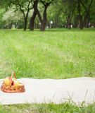 Picnic in the park. A green meadow with grass, a plaid and apples in a basket. Romantic dinner in nature. Free space for text. royalty free stock photography