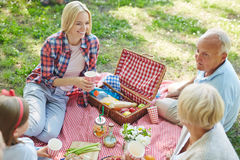 Picnic in the park Royalty Free Stock Photos