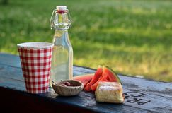 Picnic in the park. Summer picnic on the bench in the park Stock Image
