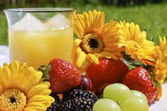 Picnic in the park on a sunny day. Healthy and tasty picnic with fruit and orange juice on a table cloth placed on grass in the park on a sunny day stock photo