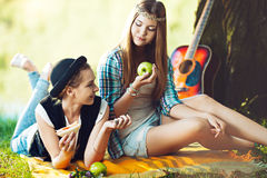 Picnic in the park Royalty Free Stock Photography
