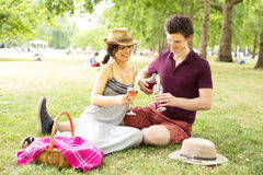 Picnic in the park Royalty Free Stock Photo