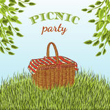 Picnic party in meadow with picnic basket and tree branches. Summer vacation. Stock Photography
