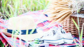 Picnic party in the meadow. Picnic party in the meadow; select and soft focus Stock Photos