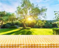 Picnic. Kitchen cloth product tablecloth display summer Stock Photography