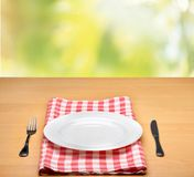Picnic. Kitchen cloth product tablecloth display summer Royalty Free Stock Images