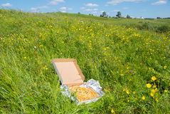 Picnic . pizza on green meadow Royalty Free Stock Image