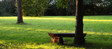 Picnic place. Bench in the park at sunset Stock Photography