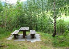 Picnic place. In Norwegian forest stock photos