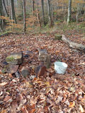 Picnic place in autumn forest. Picnic at forest glade, fireplace among fallen leaves Stock Photography