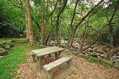 Picnic place in forest Stock Photography