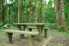 Picnic place in forest Royalty Free Stock Image
