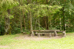 Picnic place in the green forest Royalty Free Stock Image