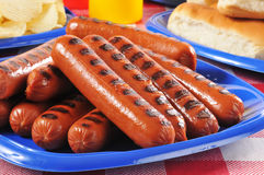 Picnic plate of grilled hot dogs Stock Images