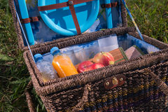 Picnic is always pleasure. Portrait of the great wicker basket for picnic standing on the plaid on grass with some juice delicious apples and napkins in it Royalty Free Stock Photos