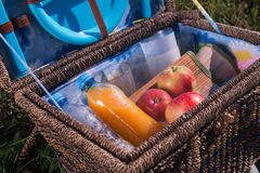 Picnic is always pleasure. Portrait of the great wicker basket for picnic standing on the plaid on grass with some juice delicious apples and napkins in it Stock Photos