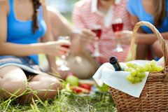 Picnic provision Stock Photography