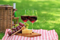 Picnic with red wine Stock Photography