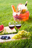 Picnic with red wine on the grass. Picnic basket with red wine on the grass Royalty Free Stock Photo
