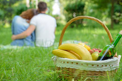 Picnic. Romantic happy couple in meadows nature sunny day Royalty Free Stock Image