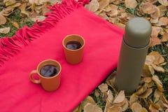 Picnic romantico con tè a dicembre Immagini Stock